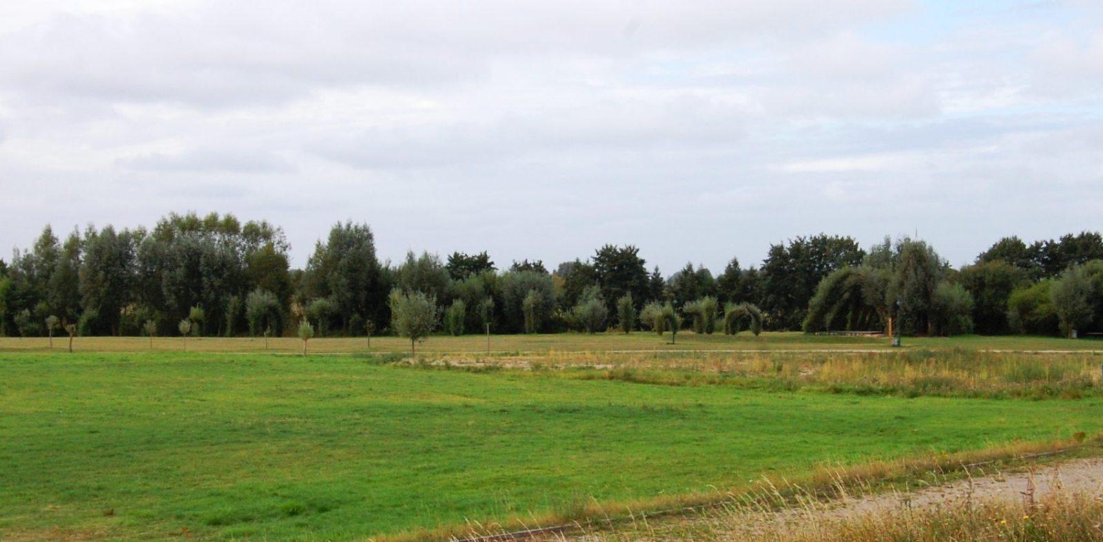 Symfonia arborealna w Boizenburgu. A jednak da się zagospodarować tereny zalewowe…