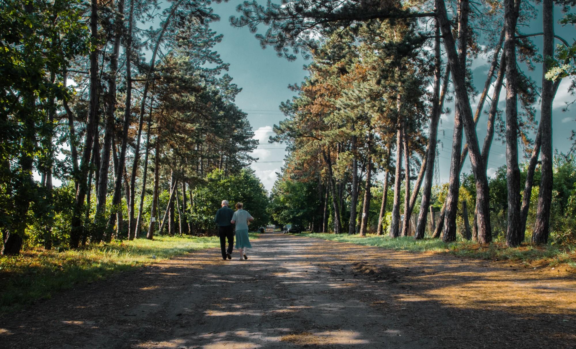 """W kierunku rewaloryzacji """"Osiedla-Ogrodu"""". Krótko o historii jednego z najciekawszych terenów zieleni we Wrocławiu."""