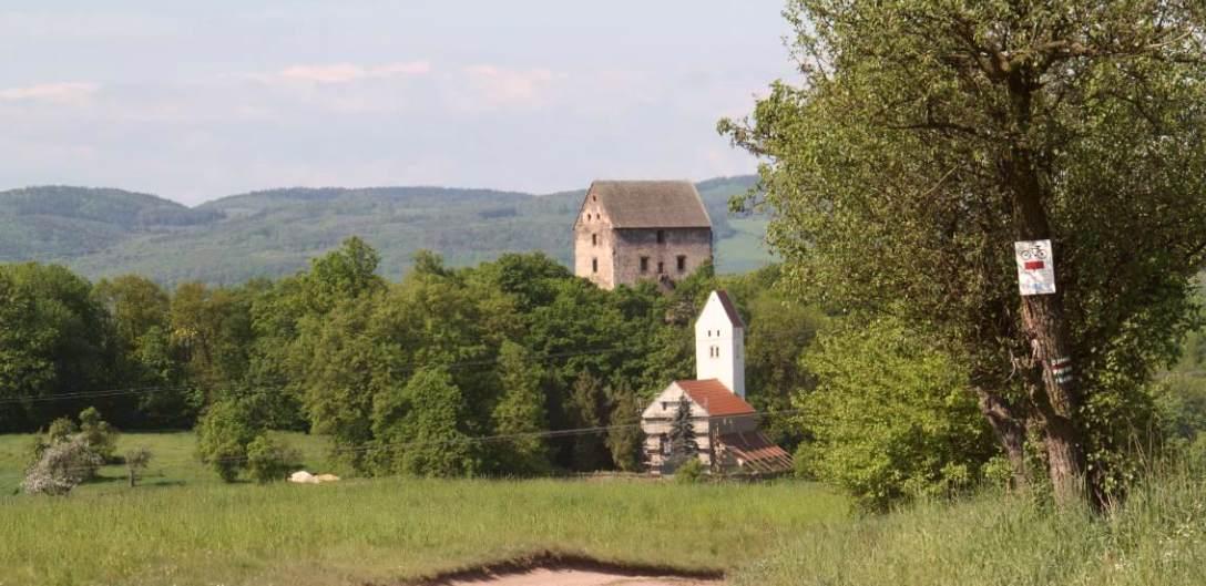 Studia i analizy krajobrazu kulturowego w rejonie zamku Świny (pow. jaworski)