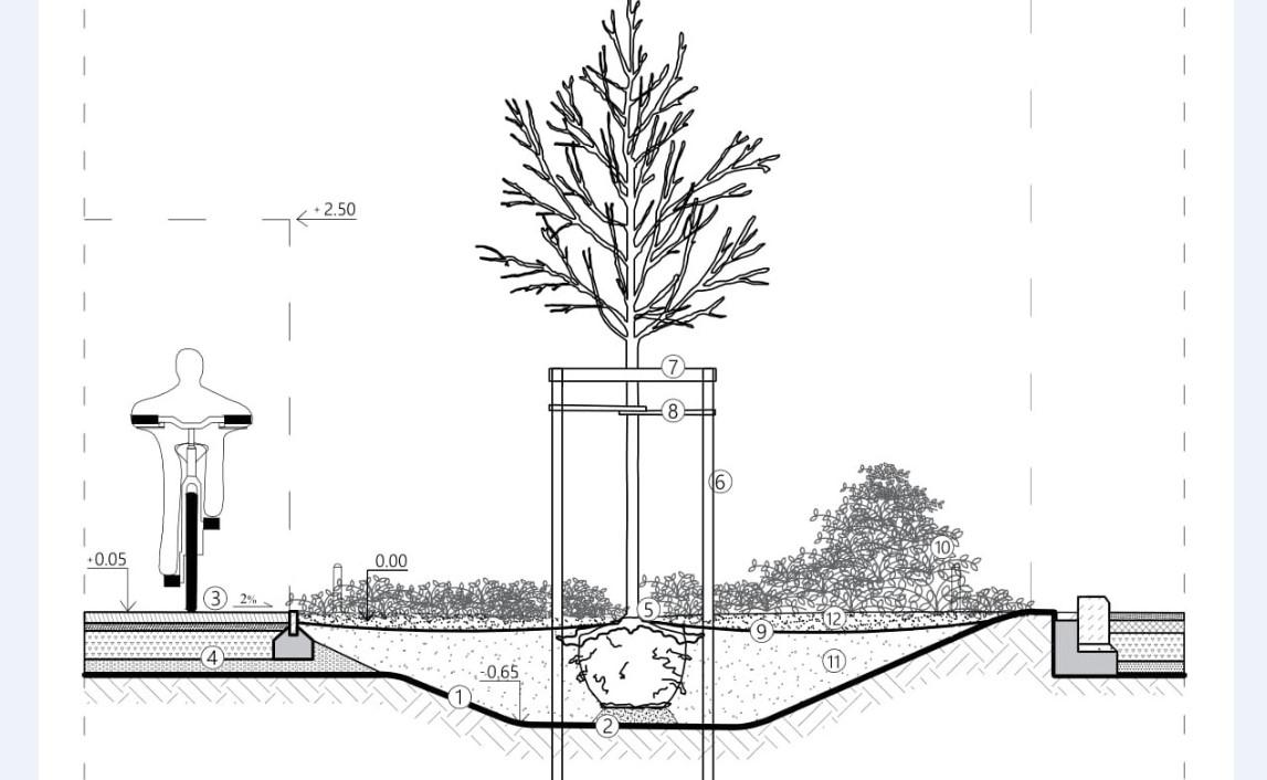 Standardy kształtowania zieleni Łodzi